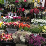 Flower Market | Paris 11th Tour | DeliciousPerspective.com
