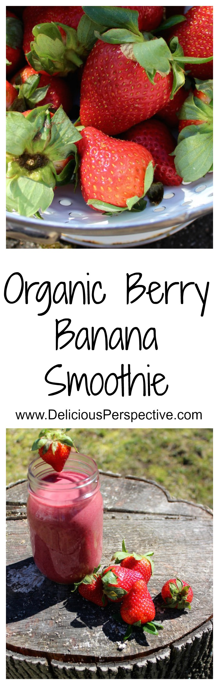 Organic Berry Banana Smoothie || DeliciousPerspective.com